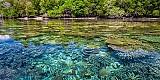 Veränderung der Arten-Zusammensetzung in Ökosystemen weltweit